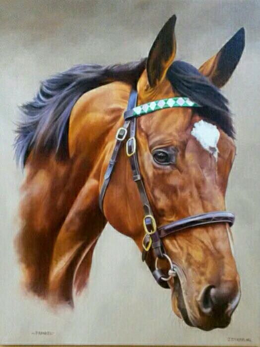 a research of the legacy of the race horse red rum The horse was bred by gordon gilliam and melvin kendrick and cobb said the breeders sold the filly to him for $2,000 she made $84,000 for winning the $140,000 kentucky downs allowance race.