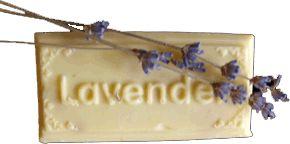 Lavender Castile Soap (smells divine!)