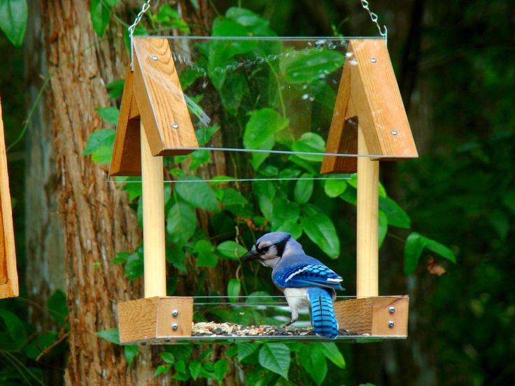 wooden bird feeder modern covered - Google Search