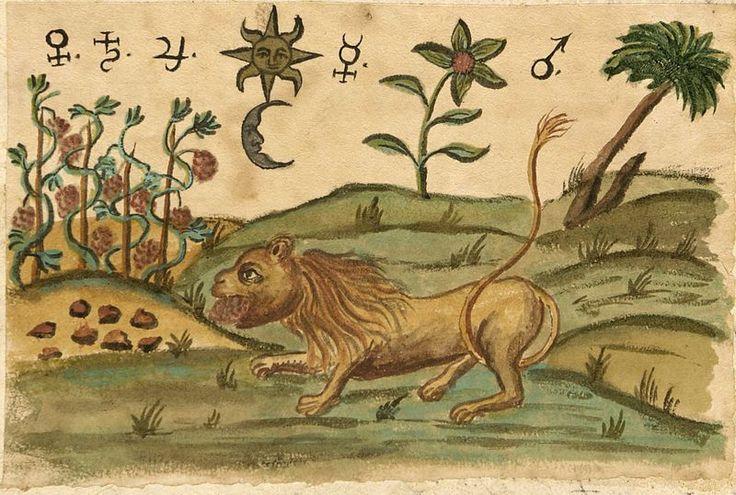Alchemy: Immagine del manoscritto Zoroaster Clavis Artis, Ms-2-27, Biblioteca Civica Hortis, Trieste, vol. 2, pag. 175, 1738. An #Alchemy artwork.