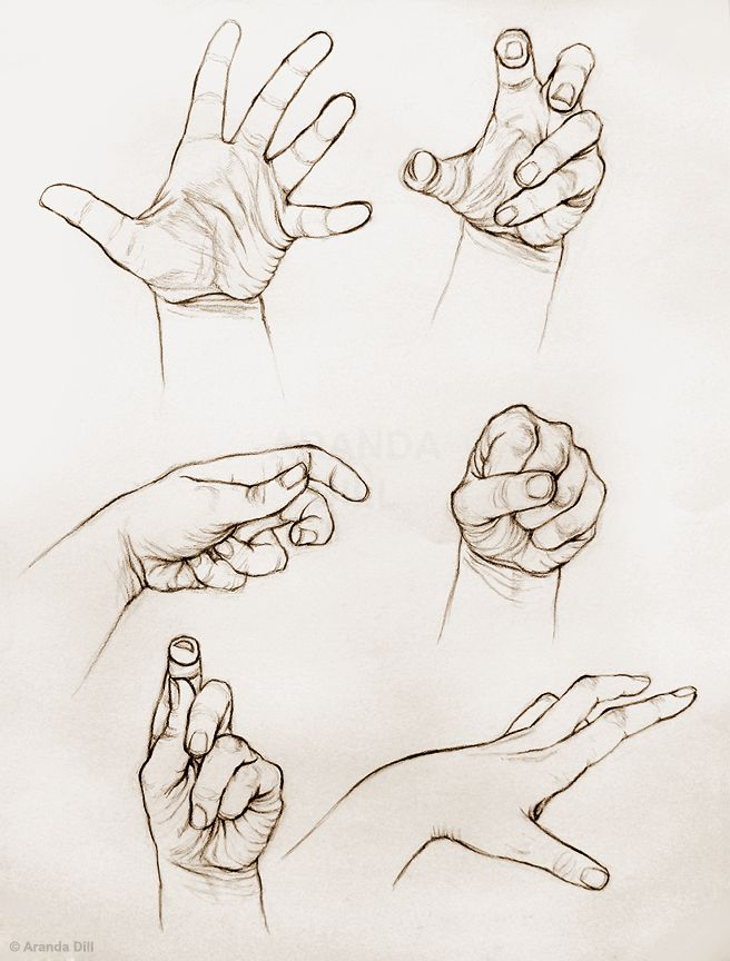 Six Hands by =ArandaDill join us http://pinterest.com/koztar https://www.facebook.com/CharacterDesignReferences