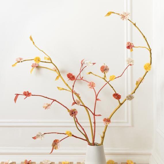 meet the dubiens lollipop tree nursery