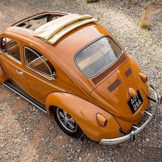 142 Best Images About Caramel Colors On Pinterest More