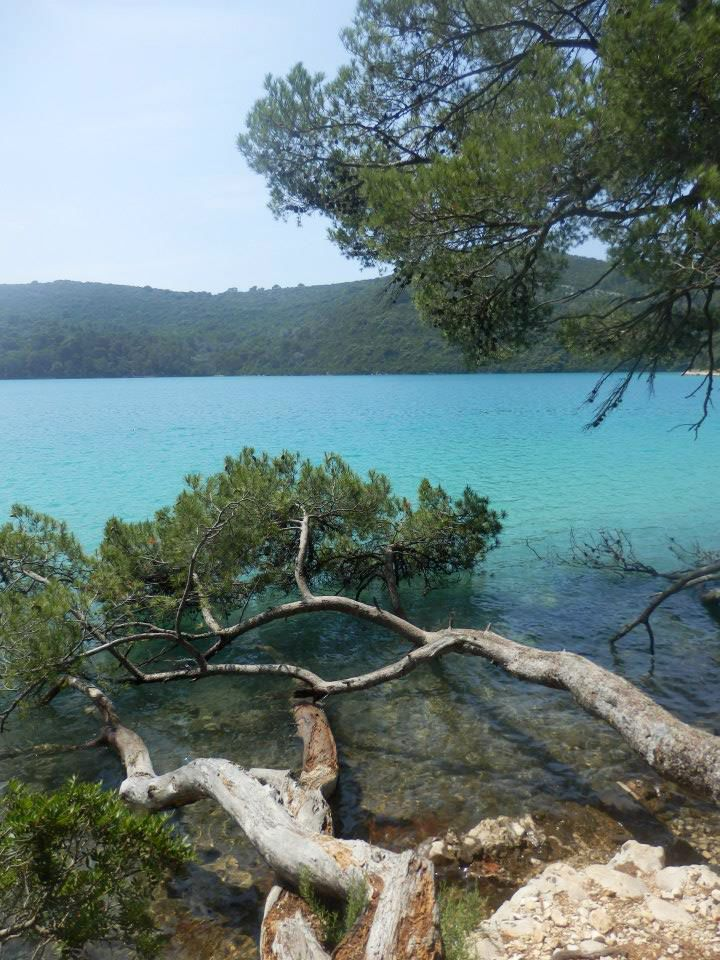 The paradise of Mljet National Park. Let us take you there this summer ...