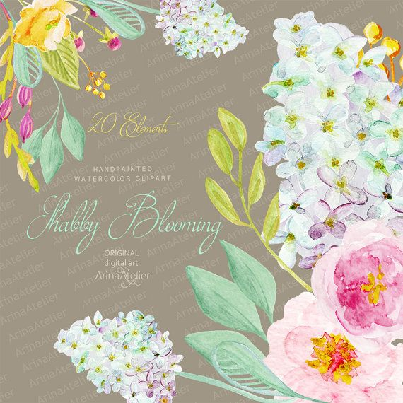 Shabby Blooming Watercolor Clipart Handpainted Flowers