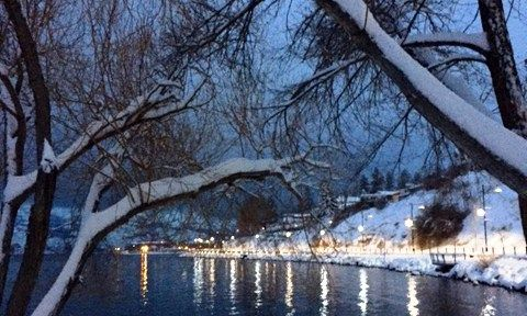 Snowstorm Beauty – Karen Wiebe--We have some great photographers around our area.  Beautiful shot after record breaking snow for the Okanagan.  :)