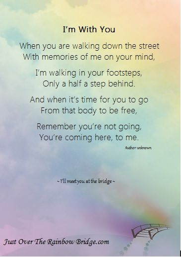 """I'm with you -  . . . Designed to promote healing & provide comfort, our site includes a visitor's area built around the sentiment """"I wish Rainbow Bridge had visiting hours.""""  Pet Loss Poems"""
