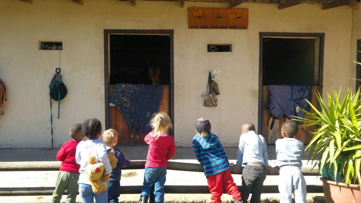 Visiting the stables