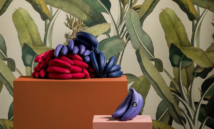 paper41-foglie-di-banano