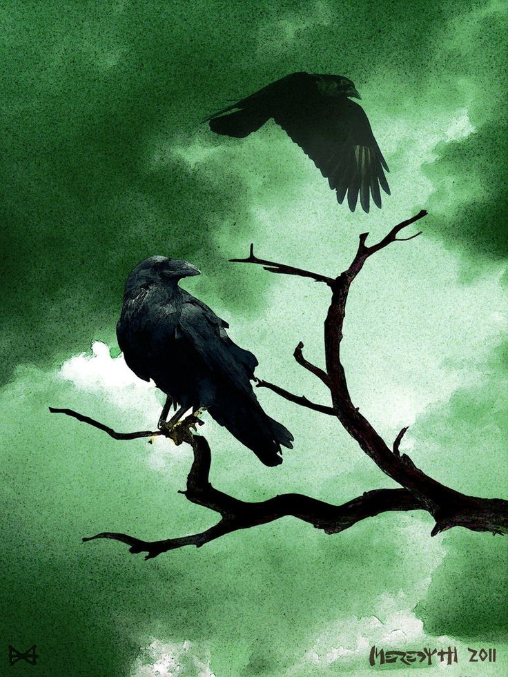 Hugin and Munin by Meredyth on deviantART