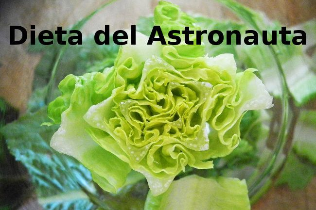 Gord@ o Delgad@: La dieta del Astronauta.