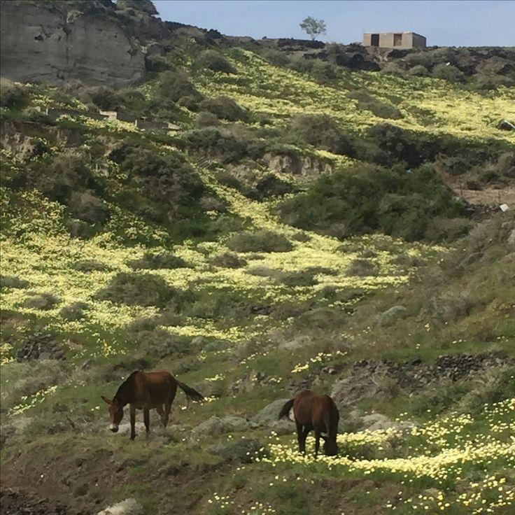 Valley in Santorini