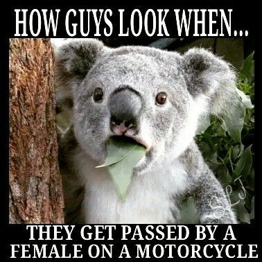 How guys look when passed by a female on a motorcycle