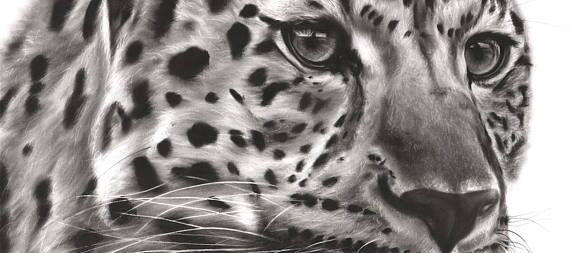 La vie est juste mieux avec des animaux autour! Illuminez votre chambre et votre esprit avec cette impression de beaux-arts de ma peinture à l'huile de léopard noir et blanc. J'espère que vous apprécierez son autant que j'ai aimé peindre!