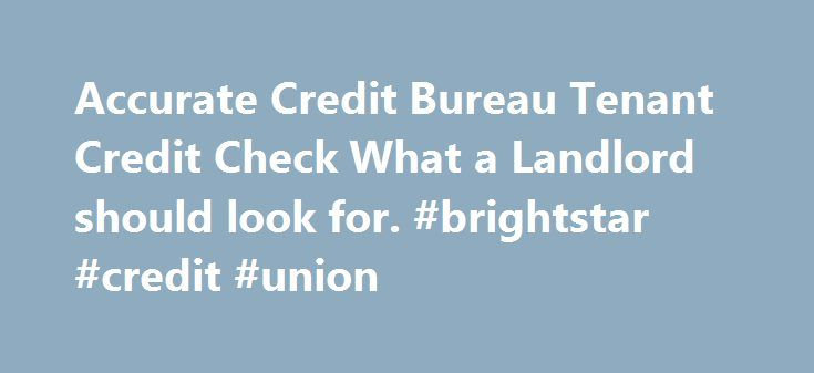 Accurate Credit Bureau Tenant Credit Check What a Landlord should look for. #brightstar #credit #union http://credit-loan.remmont.com/accurate-credit-bureau-tenant-credit-check-what-a-landlord-should-look-for-brightstar-credit-union/  #tenant credit check # Accurate Credit Bureau Tenant Credit Check What a Landlord should look for What to Look for in a Tenant's Credit Report A credit report contains a gold mine of information for a prospective landlord. You can find out, for example, if a…