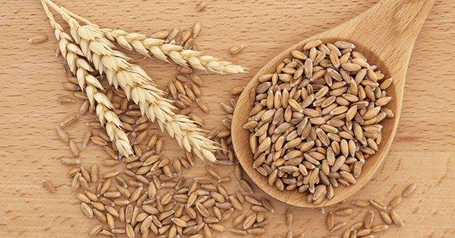 Farro: cereale nutriente e proteico, ideale per sostituire il riso nei risotti - RicetteCuCo.it