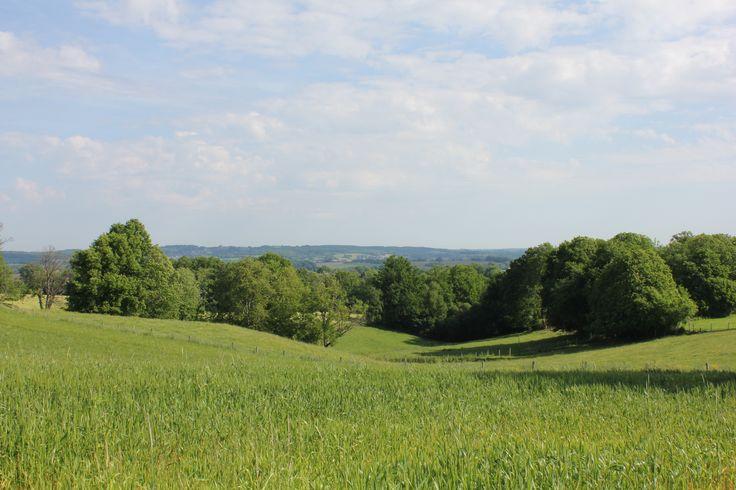 Paysages aux environs du hameau des Vignes proche de Bersac-sur-Rivalier. Le Pays de l'Occitane et des Monts d'Ambazac est un massif granitique qui culmine à 701 mètres. Le Pays offre une diversité de paysage de vallées, landes et forêts qui s'offriront à vous par la randonnée. La nature reste prédominante avec des lieux secrets tels que la Tourbière des Dauges ou l'Arboretum de la Jonchère. En savoir + sur www.randonnee-hautevienne.com