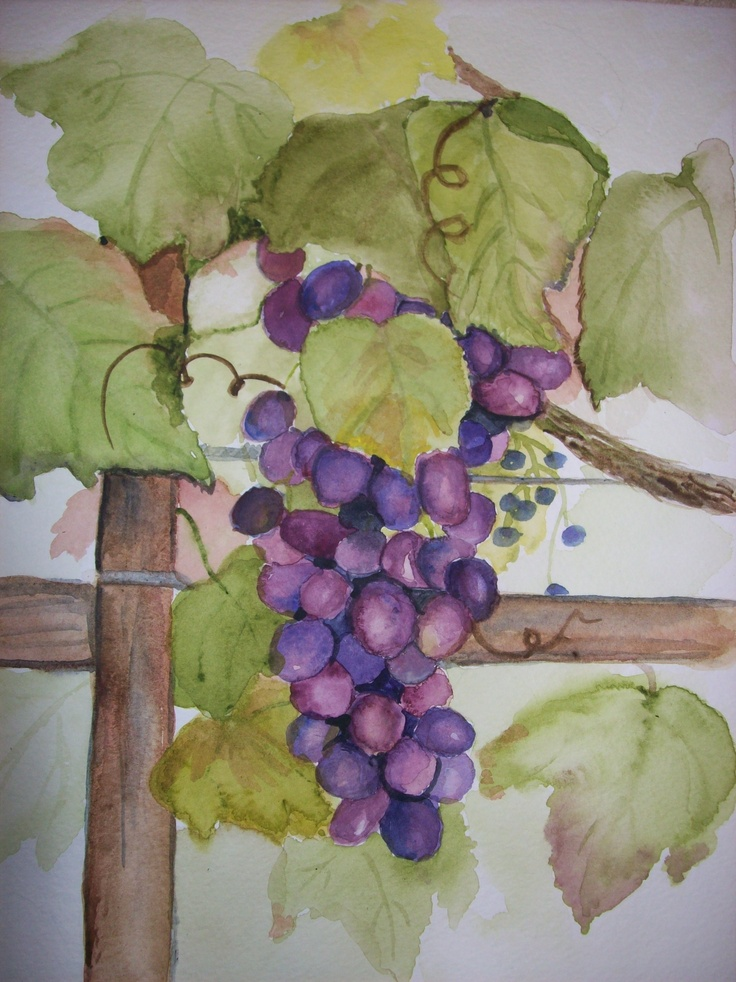 17 Best Images About Fruit Of The Vine Painting On