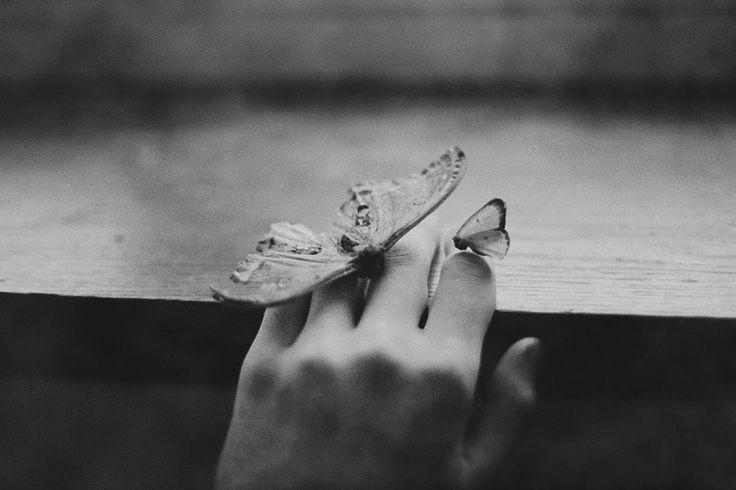 tocco di farfalla....