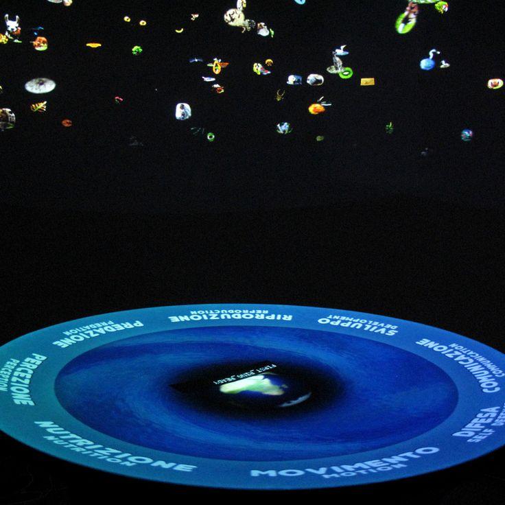 Allestimento Interattivo Museo Venezia - Vimage