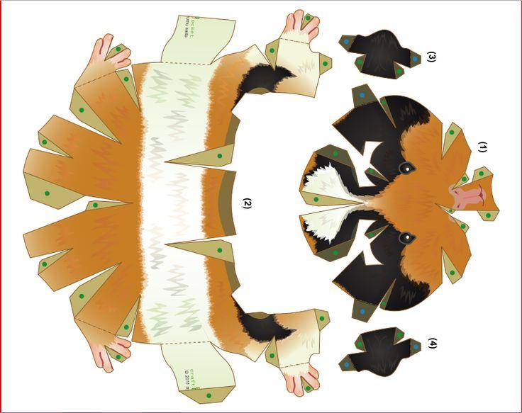 Guinea Pig Template 3d Paper Crafts Pinterest Paper