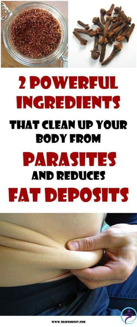 clean up your body from parasites and reduce fat deposits food pinterest fat and bodies