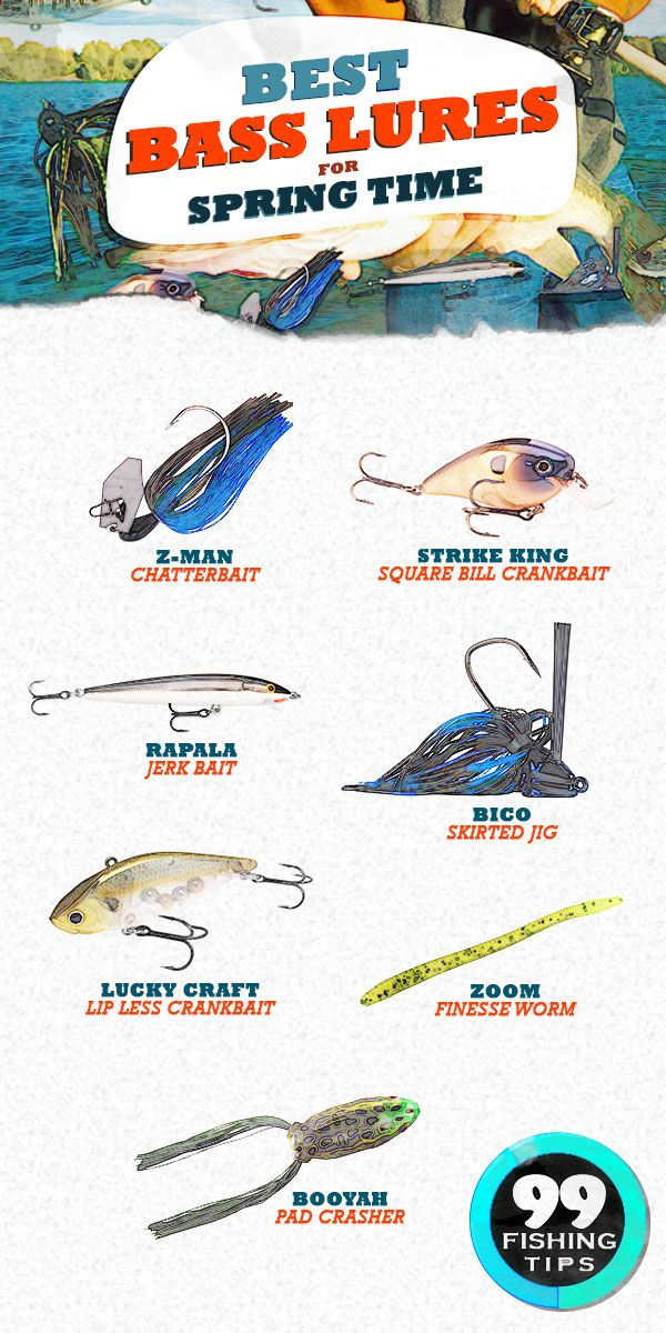 Best Bass Lures for Spring | Bass lures, Best bass lures, Fishing tips