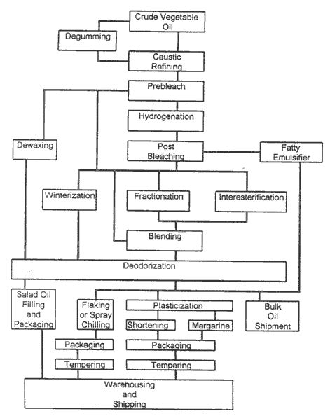 The Processing System of Vegetable Oils