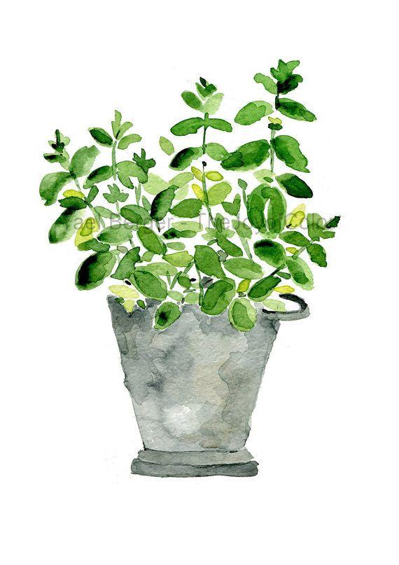 Plante de menthe impression, menthe en pot tin, herb print, impression d'art de l'aquarelle, cuisine, fête des mères jour, décoration murale, Cottage chic, menthe, grise