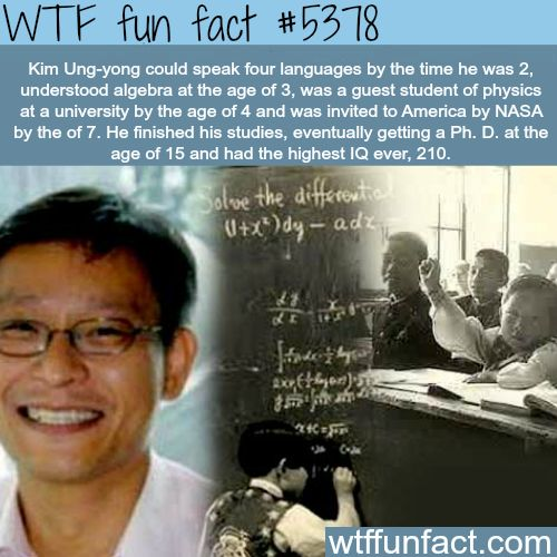 The man with the highest IQ in the world - WTF fun facts