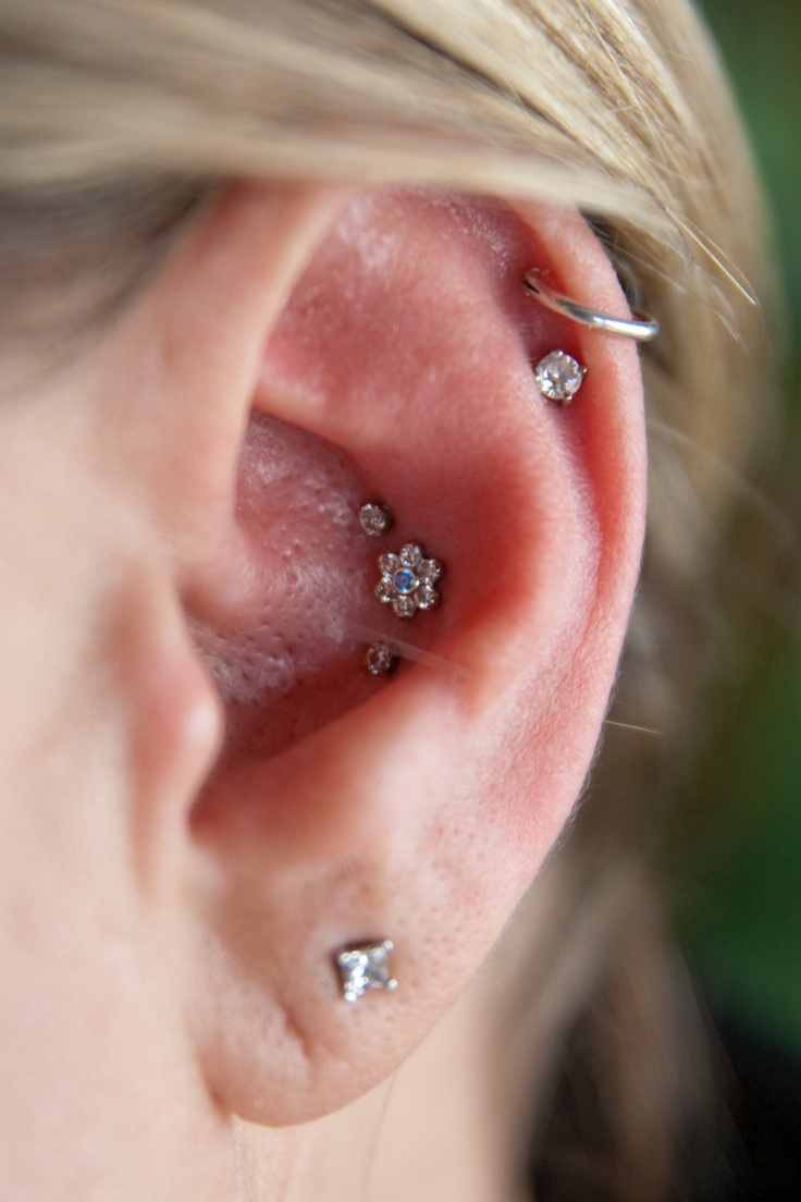 awesome triple conch with beautiful jewelry from industrial strength