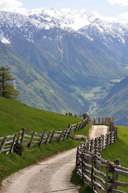 Spring in the alps  Oh, to walk down this path and see what is on the other side of the hill!