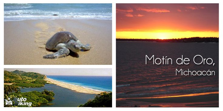 En Motín de Oro encontrarás solitarias y amplias playas sumergidas en un ambiente de paz, perfecto para olvidarse del mundo. Podrás nadar, acampar y disfrutar del mar y de sus atardeceres