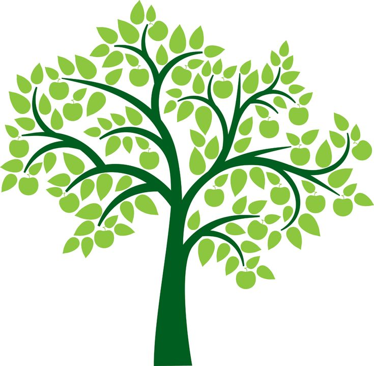 Family Tree Genealoy And Backgrounds Clipart Family History
