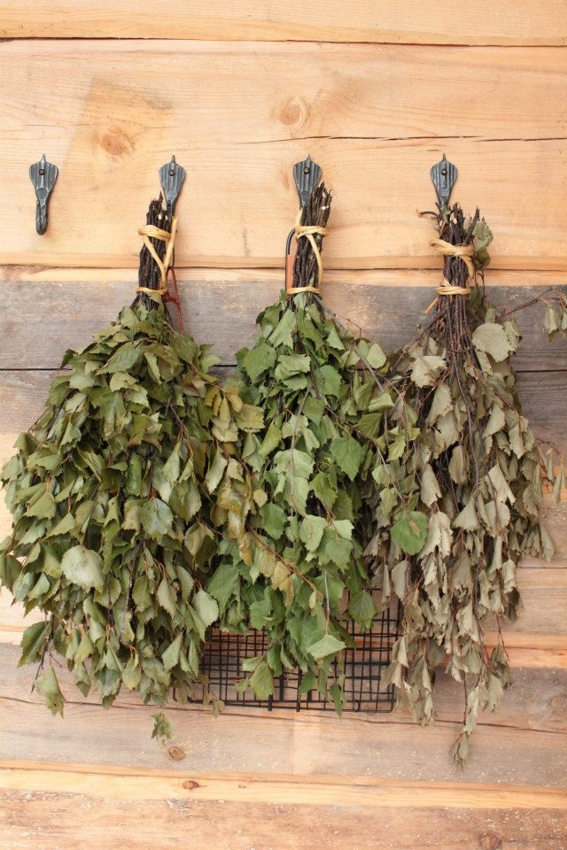 Birch bough for Saunas