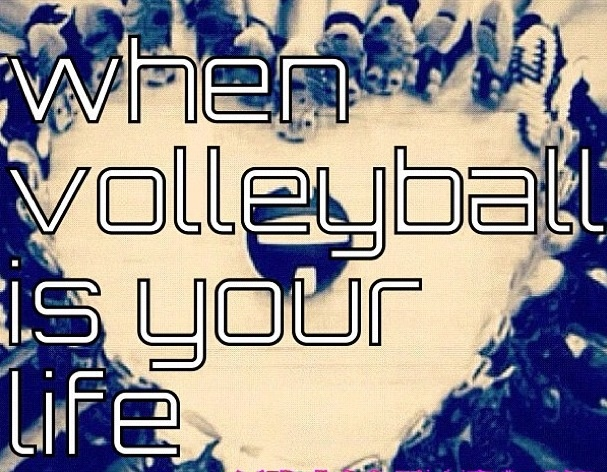 cute Volleyball picture