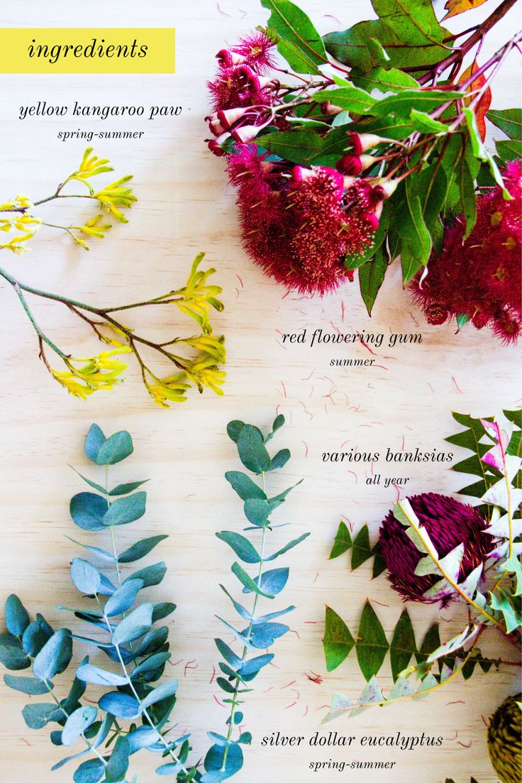 what flowers to use for an australian-day natives-filled floral arrangement bouquet!