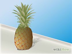 How to grow a pineapple from the top of another pineapple