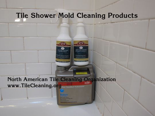 1000 Ideas About Shower Mold Cleaner On Pinterest Shower Mold Shower Door Cleaning And Mold