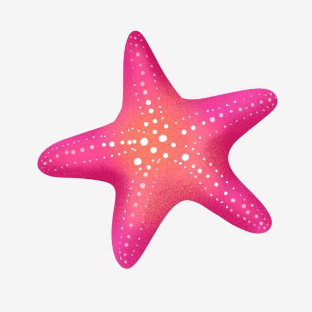 Pin On Cartoon Starfish
