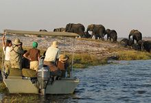 Boat based game viewing, Chobe River