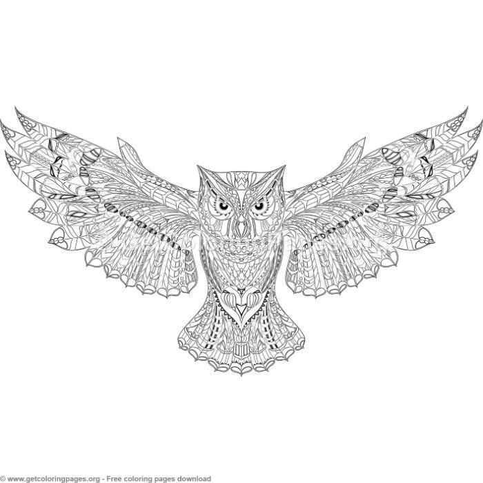 Image by Shutterstock Lovely Owl Doodle Women/'s Tee