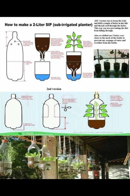 How to make a Sub-irrigation Planter from a 2liter bottle