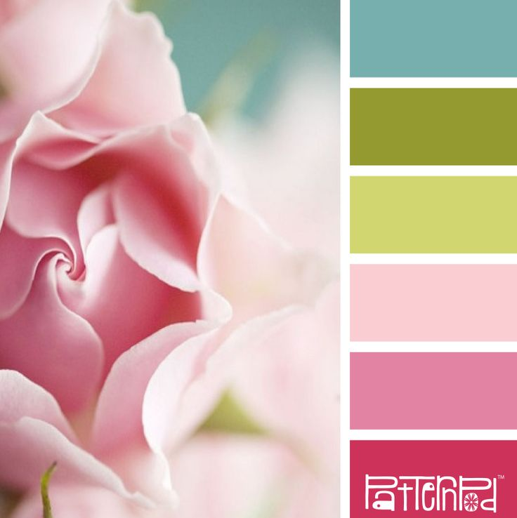Blushing Bloom #patternpod #patternpodcolor #color #colorpalettes