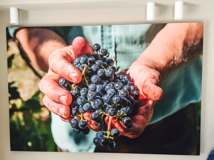 Ci prenderemo cura di voi da UVE Rooms & Wine Bar We'll take care of you @ UVE Rooms & Wine Bar