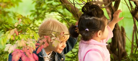 """What is the """"Outdoor Classroom""""? Article by Eric Nelson"""