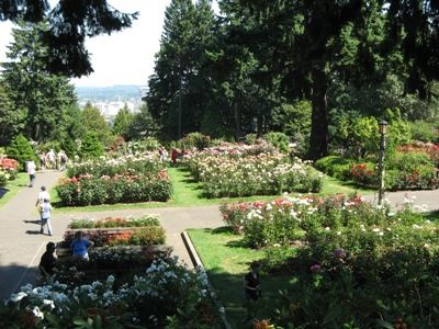 Washington Park is a public urban park in Portland Oregon