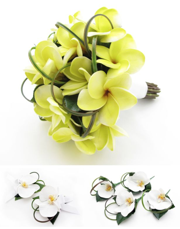 Orchid Wedding Set - BM/Buttonholes/Corsages pic  This is the extra pic for: http://www.pinterest.com/pin/151926187405778806/