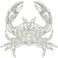 SDQL 0051 Crab