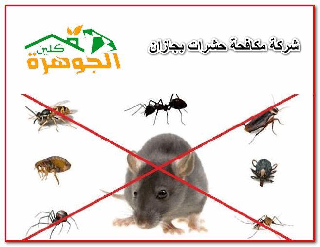 شركة مكافحة حشرات بجازان تقوم بالاستعانة بالمبيدات التي تخلص الأماكن من الحشرات بشكل تام بأسهل الطرق وبأحدث الأجهزة ال Novelty Christmas Insect Control Novelty
